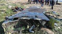 Irane numuštas lėktuvas: ant variklių nerado gaisro žymių (nuotr. SCANPIX)