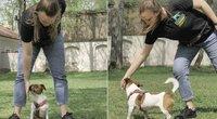 Parodė du smagius ir itin naudingus žaidimus su šuniu