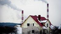 Biokuras naudojamas šildymui (Fotodiena/Karolis Kavolėlis)