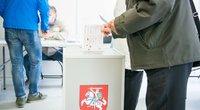 Rinkimai (nuotr. Fotodiena.lt)