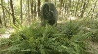 Gyvūnų kapinės (nuotr. stop kadras)