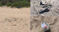"""Pasipiktino šiukšlėmis Palangos paplūdimyje: """"Eini ir bijai, kad kojas susižeisi"""" (tv3.lt fotomontažas)"""