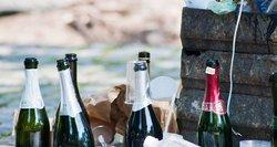 Ištyrė alkoholio vartojimą Lietuvoje: atskleidė, kaip atrodo girtaujantis asmuo