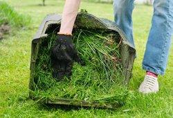Už nenupjautą žolę – bauda iki 600 eurų: kiek kainuoja pasamdyti pjovėjus?