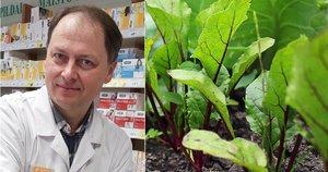 Vaistininkas Kęstutis kasmet savo darže augina burokėlius (tv3.lt fotomontažas)