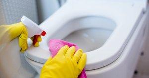 Tualeto valymas (nuotr. shutterstock.com)