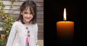 Mama negali sulaikyti skausmo: dukrą šalia mokyklos pražudė nuvirtęs medis  (tv3.lt fotomontažas)