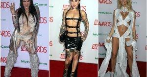 """""""AVN Awards"""" (tv3.lt fotomontažas)"""