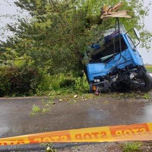 Eismo įvykis Vilkaviškyje: nesuvaldytas sunkvežimis rėžėsi į medį