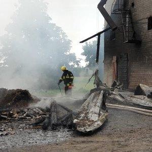 Vilkaviškio rajone žaibas smogė į grūdų sandėlį