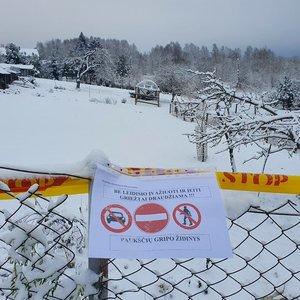 Agresyvus paukščių gripas – jau Lietuvoje: naminių paukščių ūkyje nustatytas pirmą kartą