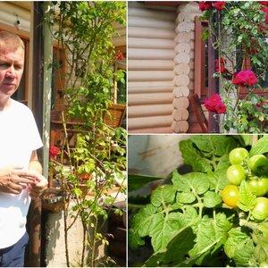 Naglis Šulija papasakojo apie savo aistrą rožėms ir aprodė savo daržo gėrybes