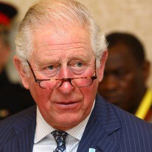 Neseniai koronaviruso diagnozę išgirdęs princas Charlesas saviizoliacijos nusprendė nebesilaikyti