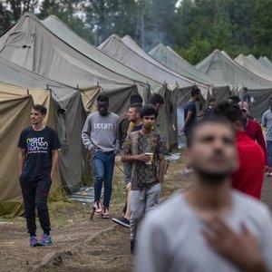 Tyrėjos perspėjimas – pagalvokite apie migrantų integraciją: reikia stebuklo, kad dauguma grįžtų į kilmės šalis