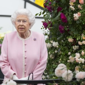 Karališkosios šeimos gyvenimas gali stipriai pasikeisti: karalienė nebedirbs?