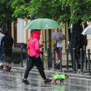 Teks pakentėti: pils lietus, trankysis žaibai