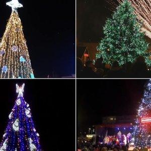 Lietuvą užkariauja Kalėdų bumas: egles įžiebė dar 5 miestai