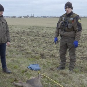 Kraupus radinys Kauno aerodrome: specialistai ieško kaltininkų