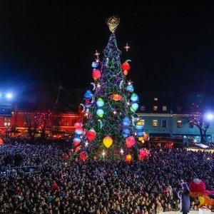 Kaune suspindo kalėdinė eglė – ji kviečia į kosmosą