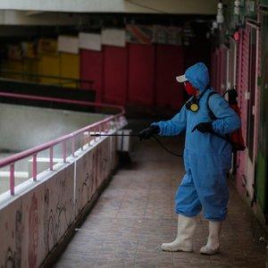 Nyderlanduose fermos darbininkai gali būti pirmieji, užsikrėtę COVID-19 nuo gyvūnų