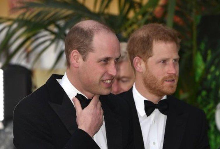 Princas Harry ir Williamas (nuotr. SCANPIX)