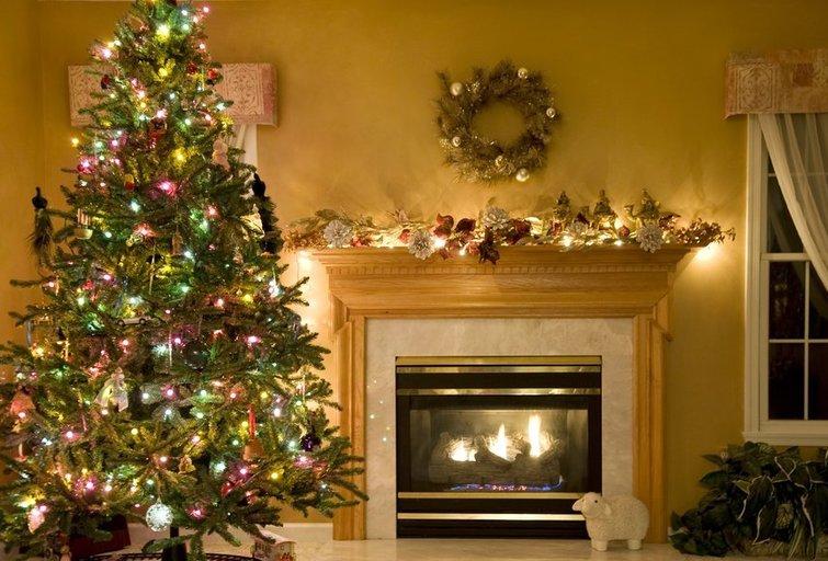Kalėdų eglė (Nuotr. shutterstock.com)