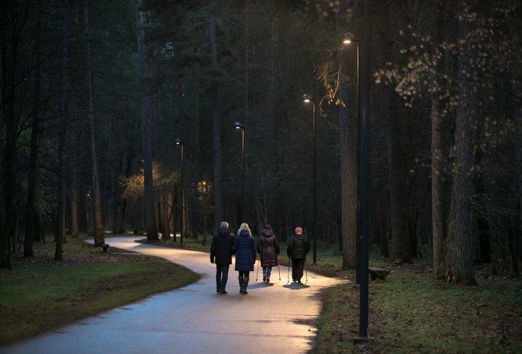 Vingio parkas (nuotr. Sauliaus Žiūros)