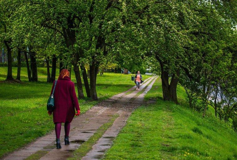 Lietingas pavasaris Vilniuje (nuotr. Fotodiena)