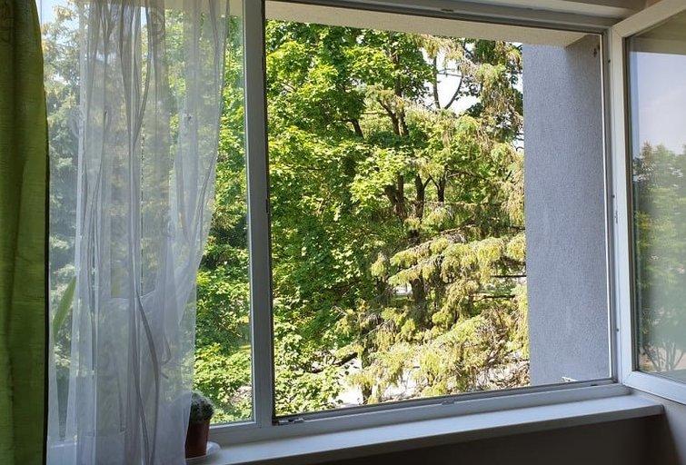 Marijampolėje per langą iškrito mažametis: jis – ligoninėje (nuotr. Raimundas Maslauskas/TV3)