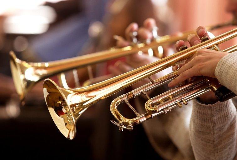 Orkestras (nuotr. Shutterstock.com)