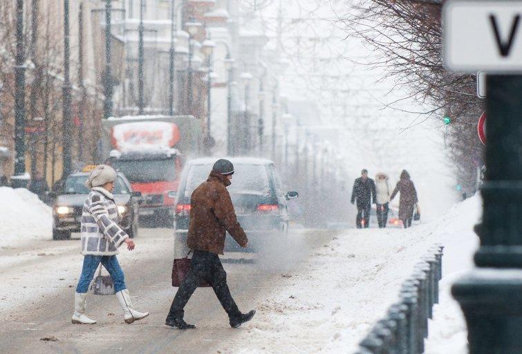 Sniegas (nuotr. Fotodiena.lt)