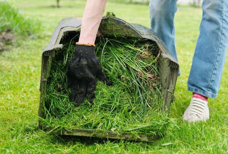 Prašo nupjauti žolę, nes bijo baudų  (nuotr. 123rf.com)