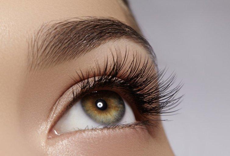 Blakstienos  (nuotr. Shutterstock.com)