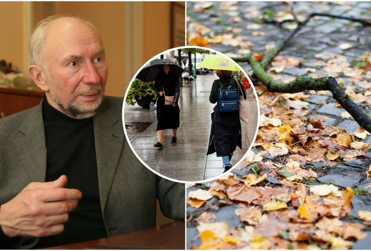 Etnologas Libertas Klimka įspėja: laukia lietingi ir niūrūs orai (nuotr. tv3.lt)
