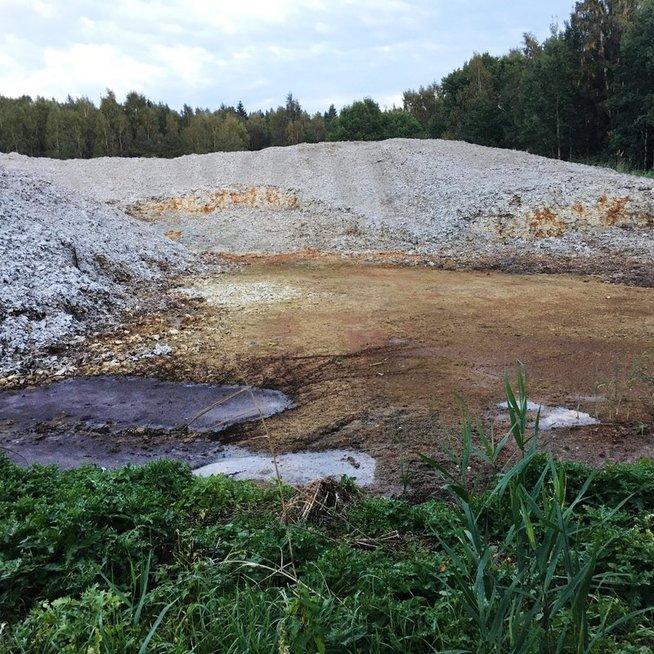 'Grigeo Klaipėda' teritorija (Marių bendruomenės nuotr.)