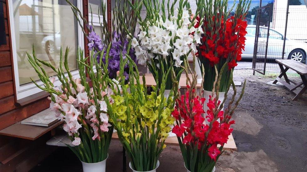 Gėlės Konarskio turguje