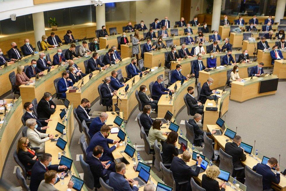 Į Seimo pirmininkus pasiūlyta vienintelė kandidatė – Viktorija Čmilytė-Nielsen
