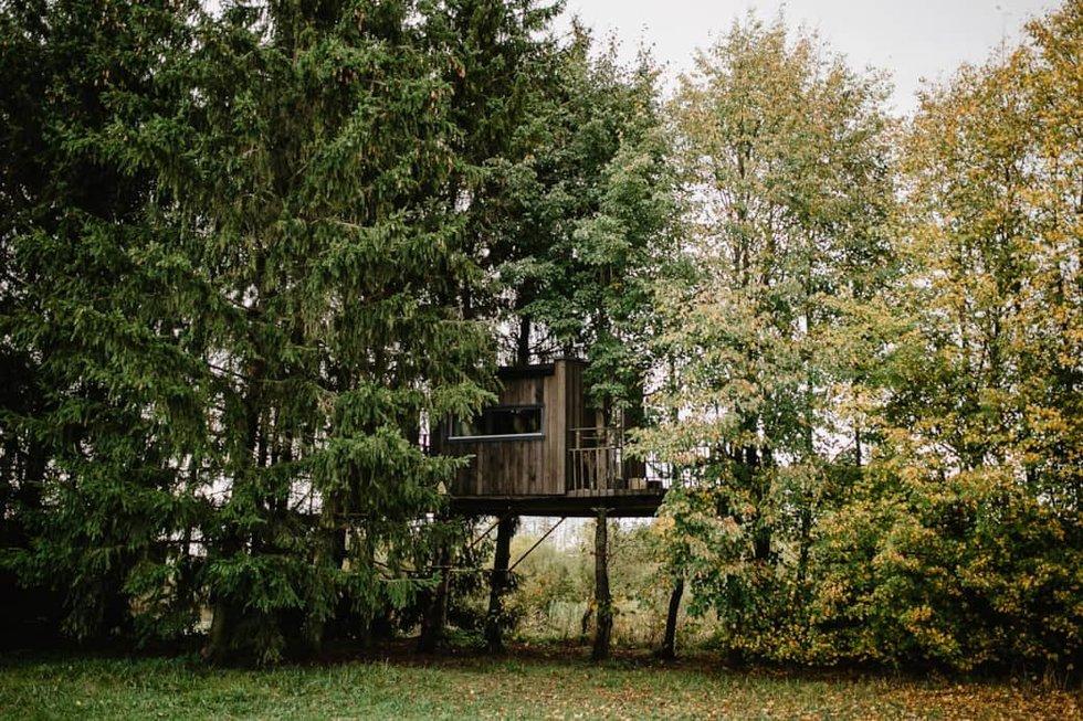 Paukščių namelis (nuotr. Sesės Saulės nuotr.)
