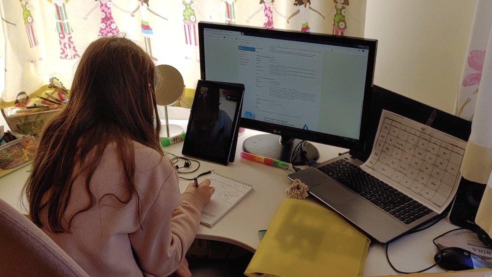 Pamokos internetu atvėrė didžiausią bėdą – patyčias: nepadorūs vaizdai ir pašaipos iš mokytojų