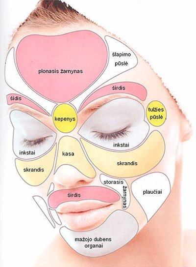 Ligų veido sritys