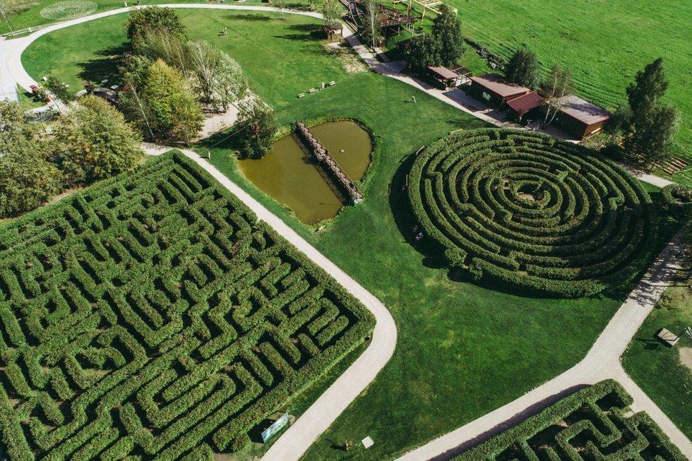 Labirintų parke veiklos gali rasti kiekvienas