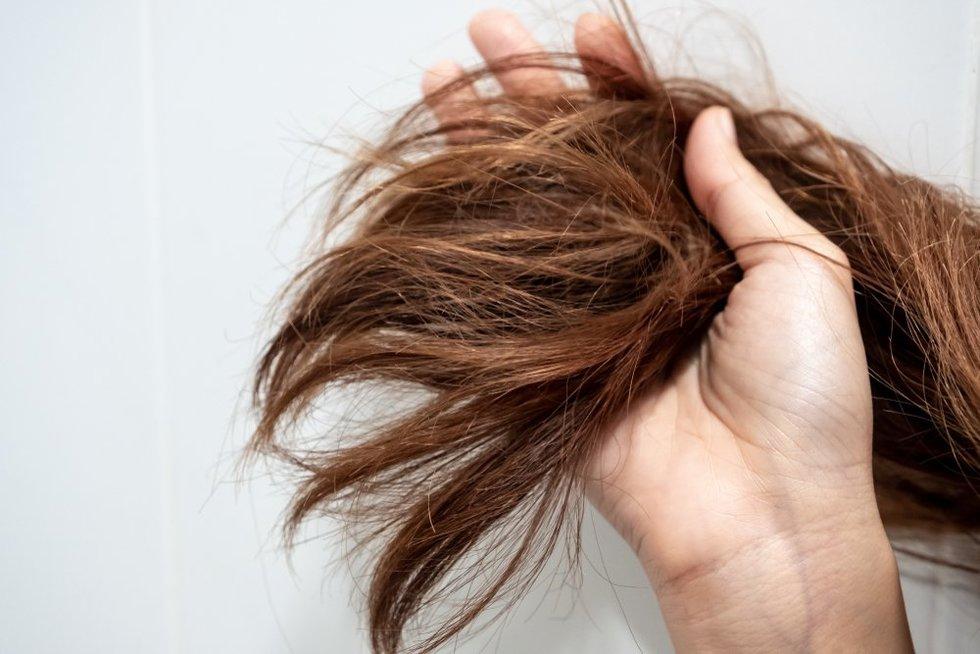 Susivėlę plaukai
