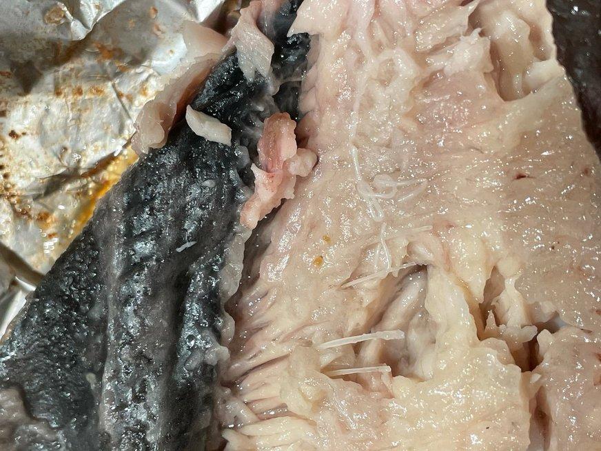Kirmėlės žuvyje (nuotr. skaitytojo)