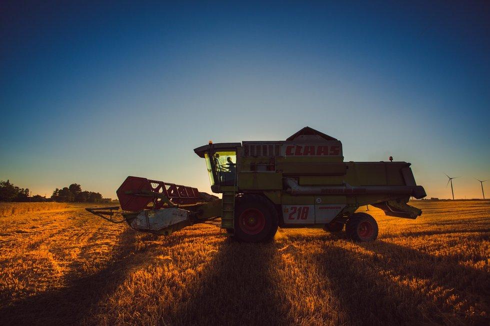 Ūkis, žemdirbystė
