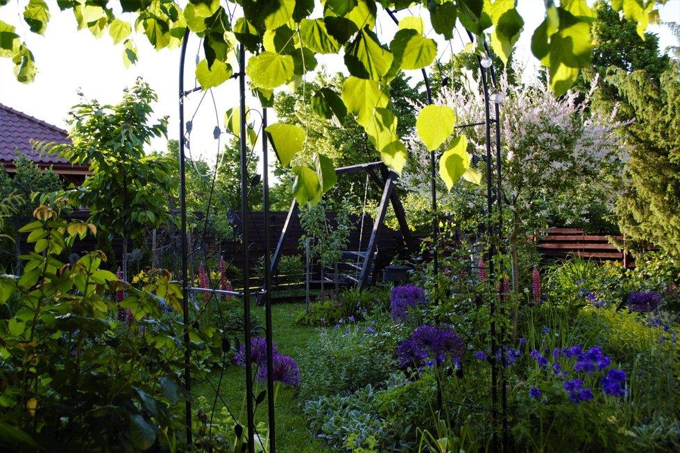 Ugnės Jonelytės-Debeikienės sodas