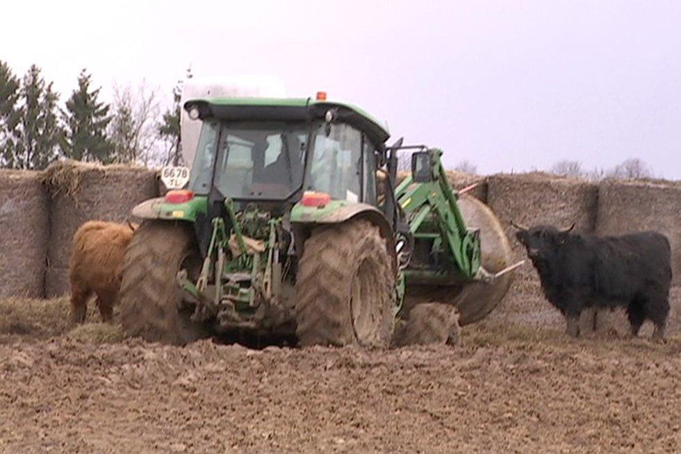 Ūkininkai (nuotr. stop kadras)