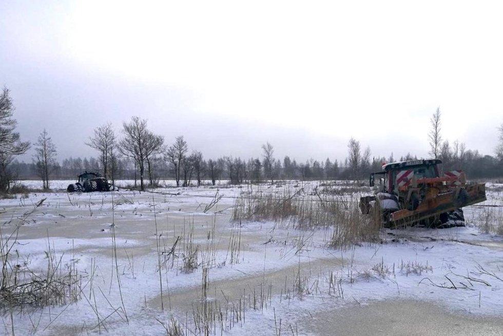 Gamtininkai džiaugiasi šaltu oru (nuotr. Baltijos aplinkos forumo)