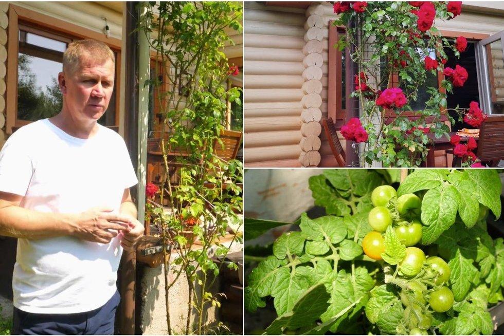 Naglis Šulija aprodė savo daržą ir sodą