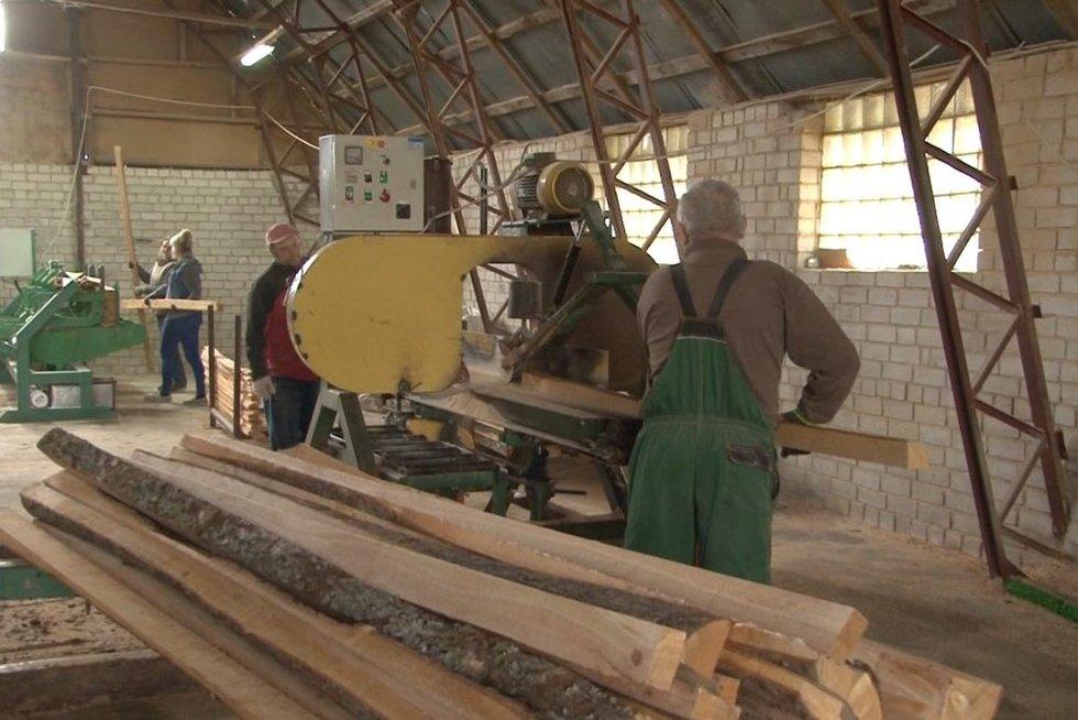 Lietuvos medienos pramonę ištiko krizė (nuotr. stop kadras)