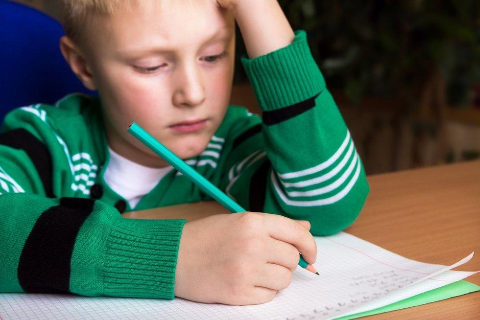 Mokymasis namuose (nuotr. 123rf.com)